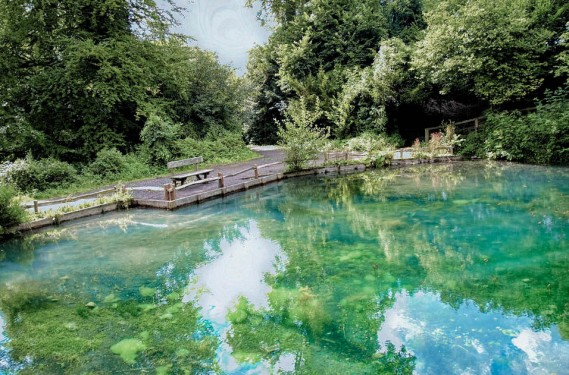 Silent Pool Lake (1 of 1).jpg