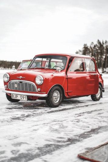 MiniSweden_LauraKukuk_comp-31