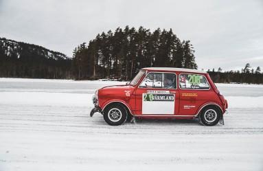 MiniSweden_LauraKukuk_comp-109