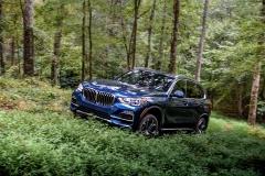 BMW X5 40i XLine 049