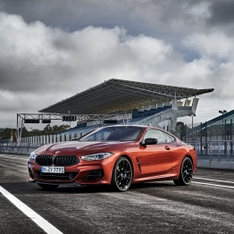 BMW 8 Coupe social 021