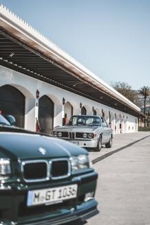 Ascari_BMW-116