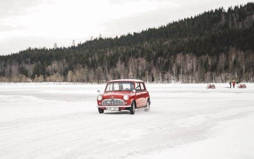 MiniSweden_LauraKukuk_comp-94