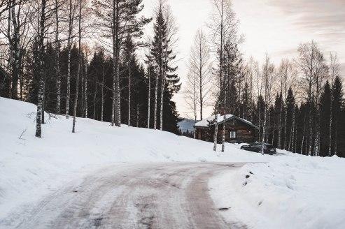 MiniSweden_LauraKukuk_comp