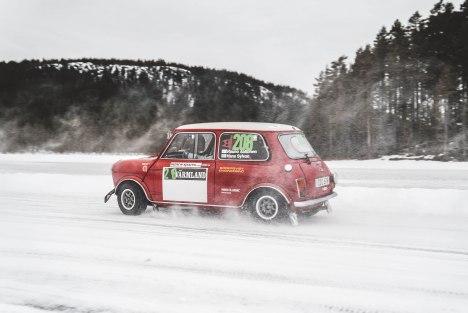 MiniSweden_LauraKukuk_comp-121